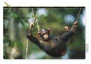 Chimpanzee Pan Troglodytes Resting Carry-all Pouch