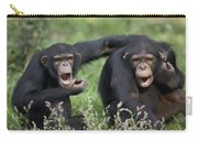 Chimpanzees Pan Troglodytes Calling Carry-all Pouch