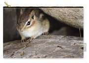 Chipmunk In Danger Carry-all Pouch
