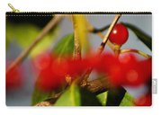 Choice Berry Carry-all Pouch by LeeAnn McLaneGoetz McLaneGoetzStudioLLCcom