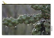 Cholla Cactus In The Rain Carry-all Pouch