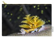 Christmas Tree Worm In Raja Ampat Carry-all Pouch