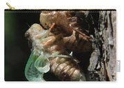 Cicada - Third In Series Carry-all Pouch