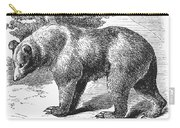 Cinnamon Bear Carry-all Pouch