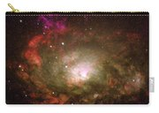 Circinus Galaxy Carry-all Pouch