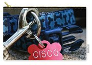 Cisco's Gear Carry-all Pouch