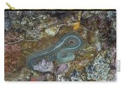 Clam Worm Carry-all Pouch