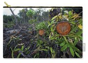 Clear Cut Red Mangrove Stand Carry-all Pouch