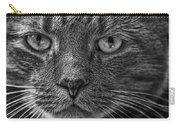 Close Up Portrait Of A Cat Carry-all Pouch
