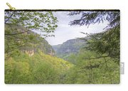 Cloudland Canyon Carry-all Pouch