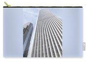 Cloudscraper Carry-all Pouch