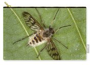 Cluster Fly Killed By Parasitic Fungus Carry-all Pouch