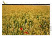 Co Waterford, Ireland Poppies In A Carry-all Pouch