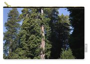 Coast Redwood Carry-all Pouch
