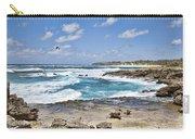 Coastal Kauai Carry-all Pouch