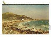 Coastal Scene Carry-all Pouch