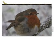 Cold Robin Carry-all Pouch