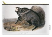 Collared Peccary, 1846 Carry-all Pouch