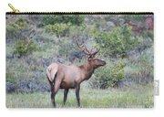 Colorado Elk Carry-all Pouch