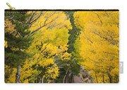 Colorado Rocky Mountain Aspen Road Portrait  Carry-all Pouch