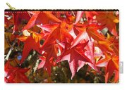 Colorful Fall Tree Red Leaves Art Prints Carry-all Pouch