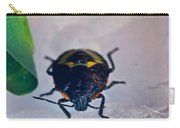 Colorful Hemiptera Nymph 1 Carry-all Pouch