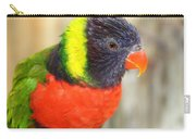 Colorful Lorikeet Parrot Carry-all Pouch