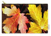 Colorful Pair Carry-all Pouch