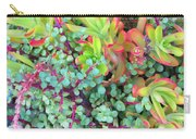 Colorful Succulent Plants For You Carry-all Pouch