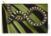 Colubrid Snake Boiga Sp A Flying Snake Carry-all Pouch