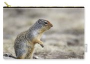 Columbian Ground Squirrel, Banff Carry-all Pouch