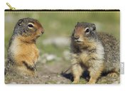 Columbian Ground Squirrels, Banff Carry-all Pouch