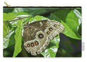 Common Blue Morpho 2917 Carry-all Pouch