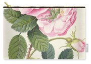 Common Provence Rose Carry-all Pouch by Georg Dionysius Ehret