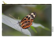Common Tiger Glassywing Carry-all Pouch