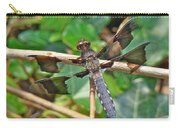 Common Whitetail Dragonfly - Plathemis Lydia - Male Carry-all Pouch