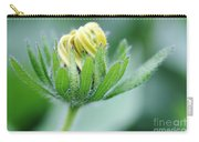 Cone Flower Rubeckia Hirta  Carry-all Pouch