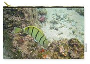Convict Tang Manini P1060089 Carry-all Pouch