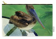 Cool Footed Pelican Carry-all Pouch