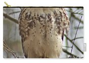 Cooper's Hawk 1 Carry-all Pouch