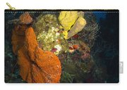 Coral And Sponge Reef, Belize Carry-all Pouch