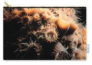 Coral Feeding 5 Carry-all Pouch