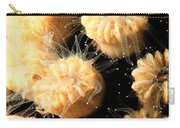 Coral Feeding Carry-all Pouch