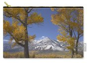 Cottonwood Trees Fall Foliage Carson Carry-all Pouch by Tim Fitzharris