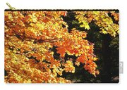 Country Color 26 Carry-all Pouch