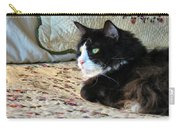 Country Kitty Carry-all Pouch by Art Dingo