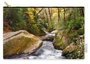 Courthouse River In The Fall 2 Carry-all Pouch