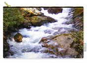 Courthouse River In The Fall Filtered Carry-all Pouch