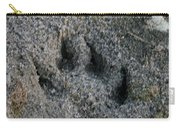 Coyote Carry-all Pouch by Susan Herber