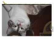 Crazy Cat Carry-all Pouch